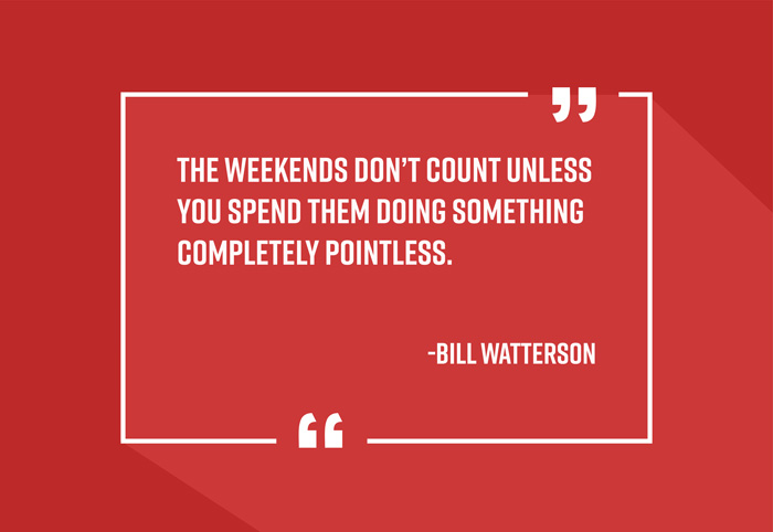 """The weekends don't count unless you spend them doing something completely pointless."" -Bill Watterson"