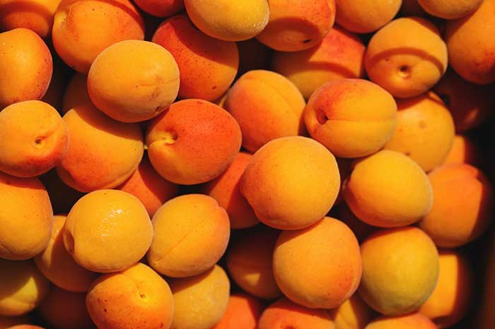 fruit with low fructose